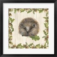 Framed Woodland Critter VI