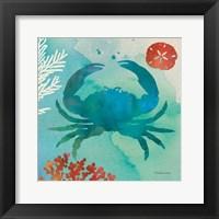 Under the Sea III Framed Print