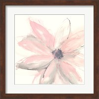 Framed Blush Clematis I