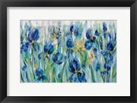 Framed Iris Flower Bed