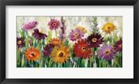 Framed Jewel Daisy Gerbera