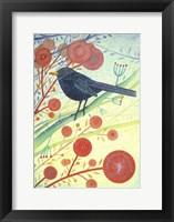 Framed Blackbird 1