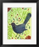 Framed Blackbird 3