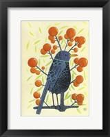 Framed Blackbird Oranges