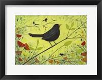 Framed Spring Blackbird 2