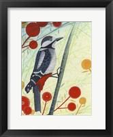 Framed Woodpecker