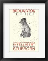 Framed Bedlington Terrier