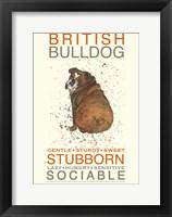 Framed British Bulldog