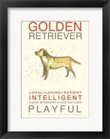 Framed Golden Retriever