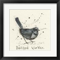 Framed Warbler