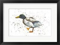 Framed Duck 1
