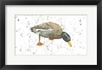 Framed Duck 3