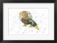 Framed Duck 4
