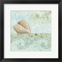 Framed Spa Shells I