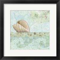 Spa Shells I Framed Print
