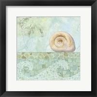 Spa Shells IV Framed Print