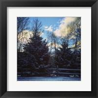 Framed Winter Morning