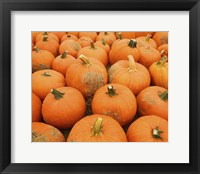 Framed Pumpkin Patch