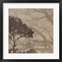 Framed Morning Mist I