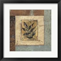 Framed Botanica II