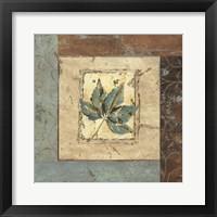 Framed Botanica IV