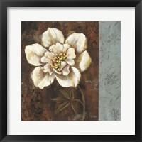 Framed White Touch Floral I
