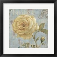 Framed Vintage Fragrance III