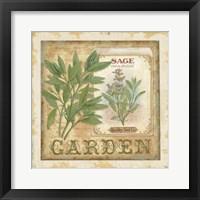 Framed Fine Herbs II
