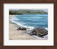Framed 2 Turtles