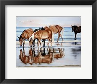 Framed Horses On Beach