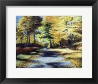 Framed Fall's Path