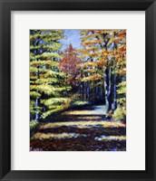 Framed Fall Path