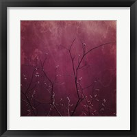 Framed Daring Pink