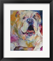 Framed Bulldog