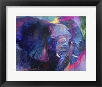 Framed Elephant 4