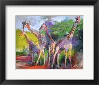 Framed Giraffed