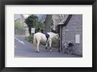 Framed Northern Wales 1