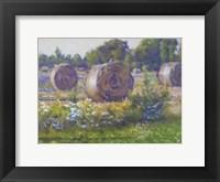 Framed Hay Stacks