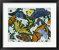 Framed Butterfly Collage