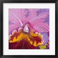 Framed Orchid Series 1