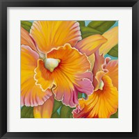 Framed Orchid Series 2