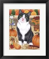 Framed Harvest Cat