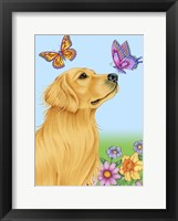 Framed Butterfly And Dog