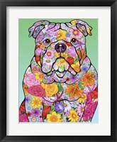 Framed Flowers Bulldog