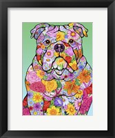 Framed Flowers Bulldog