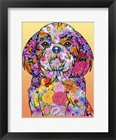 Framed Flowers Shih Tzu