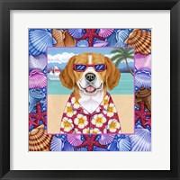 Framed Seashells Beagle