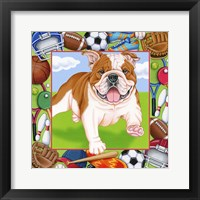 Framed Sports Bulldog