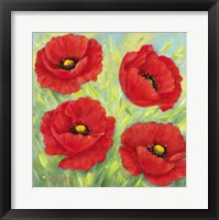 Framed Poppies A