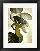 Framed Umbrella